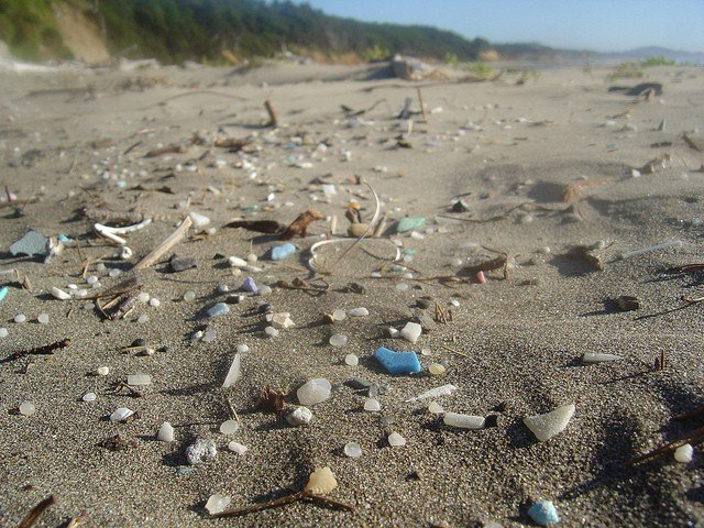 pacific-ocean-plastic-on-an-oregon-public-beach