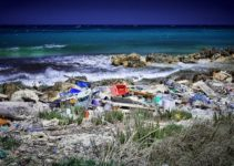 13 Fantastic Solutions to Plastic Pollution To Reduce Plastic Waste