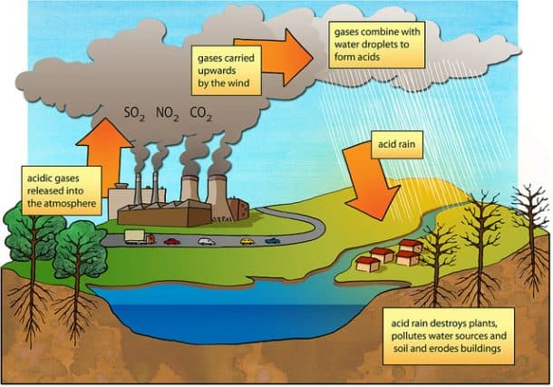 the causes and effects of acid rain a type of air pollution What type of pollution causes acid rain finally, because of the acid content in the rain you can sometimes smell it the effects of air pollution are diverse.