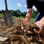 What is Soil Conservation and What are Various Ways To Conserve Soil?