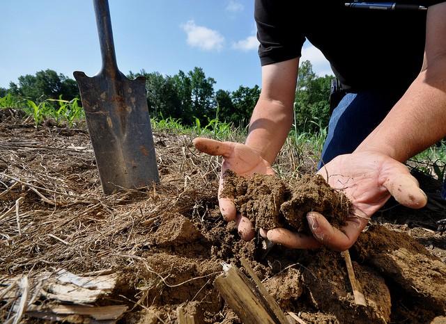 Conservacion del suelo