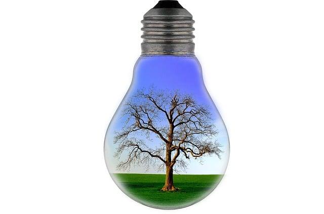 bulb-light-tree-lighting-landscape-save-electricity
