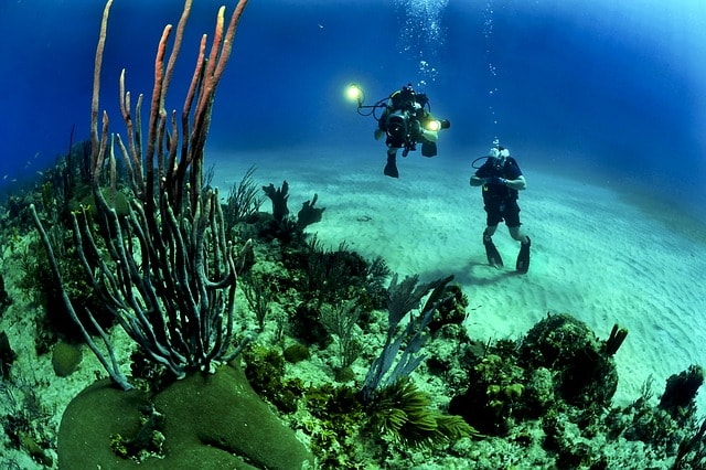 divers-scuba-reef-underwater-sea-7-oceans