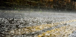 rain-raindrops-seasons-water-macro