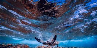 sea-ocean-underwater-turtle
