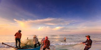 fishermen-fishing-the-work