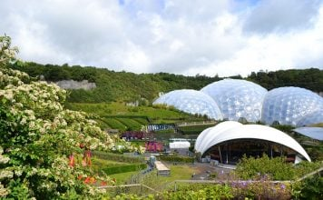 eden-project-cornwall-garden