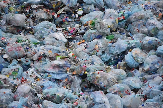 15 Serious Effects Of Plastic Bags Causing Environmental