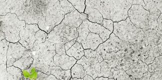 climate-change-climate-drought