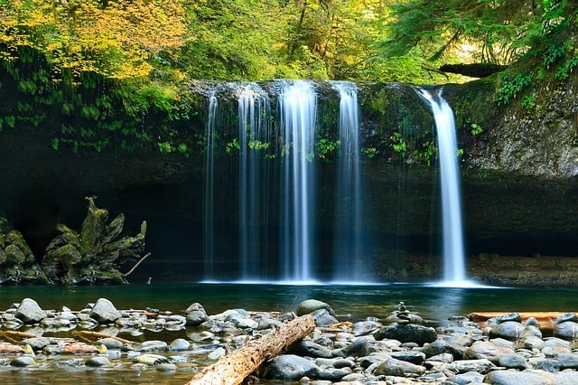 waterfall-rocks-trees-forest-woods