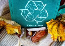 30 Extraordinary Recycling Facts For Kids That You Absolutely Need to Know