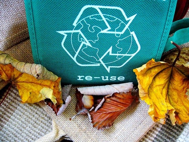recycle-reuse-recycling-recyclable