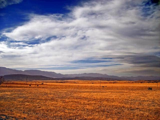 The Great Plains: Climate, Location, Animals and Interesting